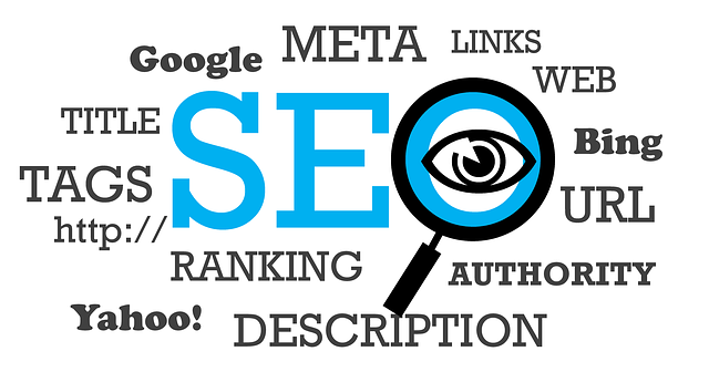 Optimizar_seo_dcm_web